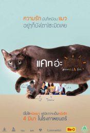 Cat a Wabb แคท อ่ะ แว้บ แบบว่ารักอ่ะ 2015