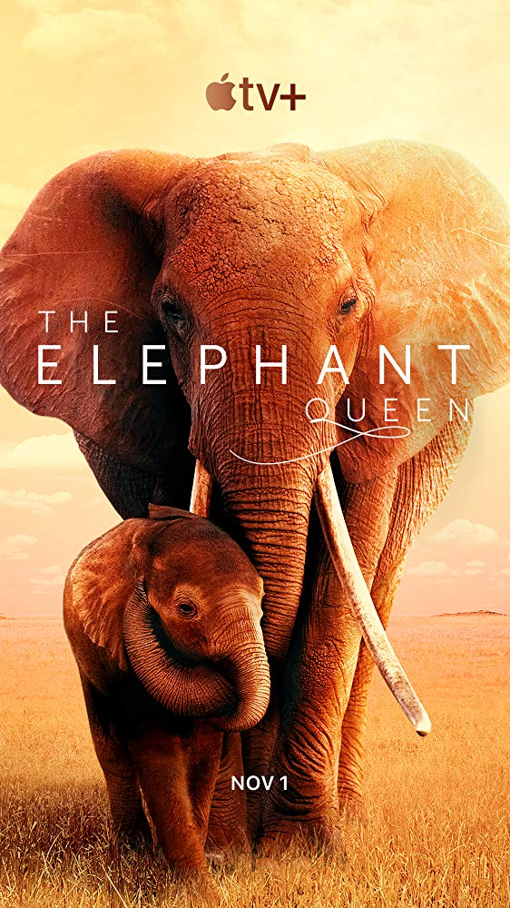 The Elephant Queen (2019) อัศจรรย์ราชินีแห่งช้าง